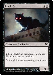 Black Cat Magic Card