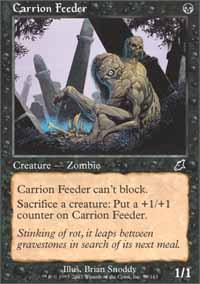 Carrion Feeder Magic Card