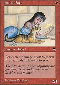 Jackal Pup Magic Card