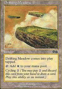Drifting Meadow Magic Card