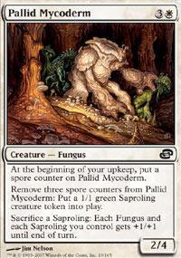 Pallid Mycoderm Magic Card