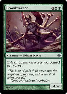 Broodwarden Magic Card