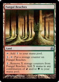 Fungal Reaches Magic Card