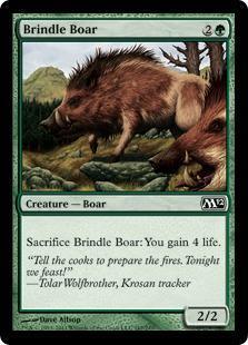 Brindle Boar Magic Card