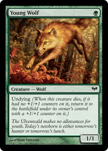 Young Wolf Magic Card