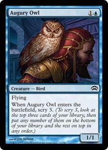 Augury Owl Magic Card