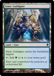 Simic Guildgate Magic Card