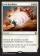 End Hostilities Magic Card Image