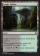 Jungle Hollow Magic Card Image