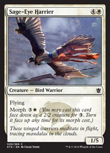 Sage-Eye Harrier Magic Card