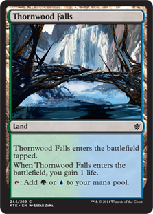 Thornwood Falls Magic Card