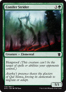 Conifer Strider Magic Card