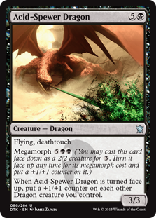 Acid-Spewer Dragon Magic Card