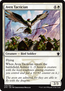 Aven Tactician Magic Card
