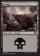 Swamp Magic Card Image