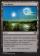 Everglades Magic Card Image