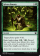 Sylvan Bounty Magic Card Image