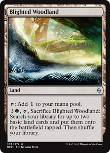 Blighted Woodland Magic Card