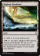 Magic Card Image