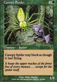 Canopy Spider Magic Card