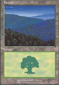 Forest Magic Card