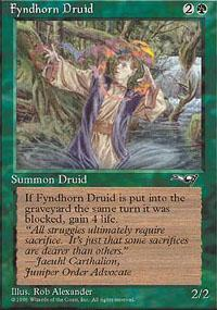 Fyndhorn Druid Magic Card