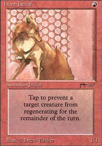 Hurr Jackal Magic Card