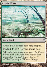 Arctic Flats Magic Card