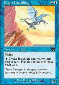 Drake Hatchling Magic Card