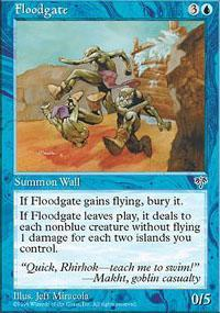 Floodgate Magic Card
