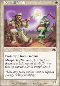 Foothill Guide Magic Card